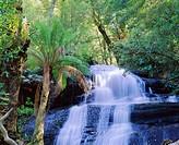 Triplet Falls, Otway National Park, Victoria, Australia