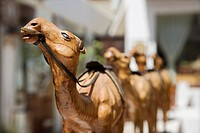 UAE Dubai wooden carved camels on display in the old Bastakia Quarter in Bur Dubai