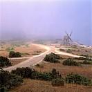 Morgondimma Över Slätt Landskap Med Enbuskar, Grusväg Och En Skurkvarn, Windmill Near By Road By Sky