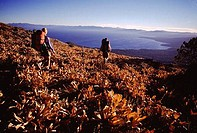 Couple walking down a hill, Tahoe Rim Trail, Lake Tahoe, California, USA