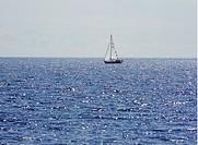 Segelbåt På Glittrande Hav, Boat Sailing In Sea