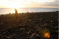 Kvinna På Klapperstensfält På Hornslandet, Man Walking On Stones By Beach