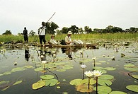 Turister i båt på flod, Afrika Africa, Tourist Sitting On Boat