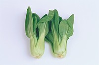 Two Chinese Cabbages
