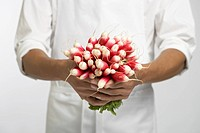 Chef holding bunch of radishes mid section