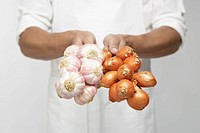 Chef holding bunch of garlic and shallot onions (mid section)