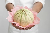 Chef holding cantaloupe melon mid section