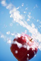 A Spray And An Apple