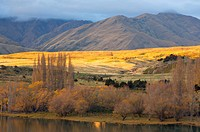 Glendhu Bay, Lake Wanaka, Wanaka, Central Otago, South Island, New Zealand, Pacific