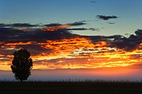 Sunrise, Alexandra, Central Otago, South Island, New Zealand, Pacific