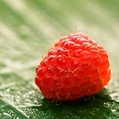 Still life of red raspberry on banana leaf