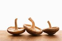 Three brown mushrooms upside down.