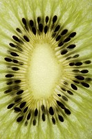 Close up of single kiwi fruit slice