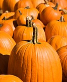 Fall pumpkins at outdoor market (thumbnail)