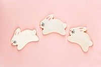 Three bunny shaped sugar cookies with decorative icing
