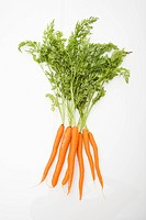 Bunch of orange carrots with green tops on white background