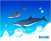 fish, sea, underwater, undersea, ocean, dolphin