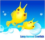fishes, sea, underwater, undersea, ocean, Long_horned Cowfish