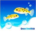 fishes, sea, underwater, undersea, ocean, background