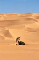 Mandara area, Southwest desert, Libya, North Africa, Africa