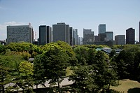 Scenery In The Center Of Tokyo
