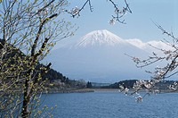 Lake Tanuki And Mt. Fuji
