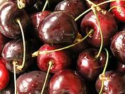 10851860, Cherries, cherry, red, wet, fresh, healt