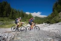 10853536, Bike, Austria, Ramsau, Dachstein, Styria