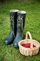 Basket of raspberry and boot on grass Ett par gröna stövlar står på gräset bredvid en korg med nyplockade hallon.