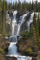 10855146, Tangle Falls, waterfall, Icefields Parkw