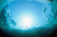 Underwater Drift Ice
