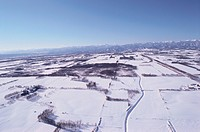 Fields In Snow