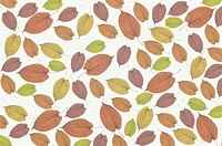 The Sheet Of Autumn Leaves