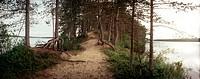 Landskapsbild Med En Sandig Stig Och Tallar På En Udde I En Sjö I Panoramaformat Från Dvina, Rysska Karelen, Byn Venehjärvi Och Sjön Venehjärvi. Foto:...