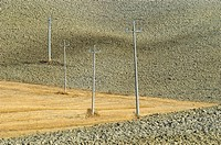 Power poles in a plowed field, Crete, Tuscany, Italy