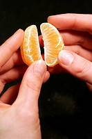 Peeled tangerine pieces held by hands