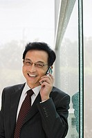 Businessman using a cellular telephone