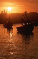 Fishing boats at sunrise, Lamberts Bay, Western Cape Province, South Africa