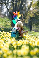 Girl with pinwheel walking through daffodil field