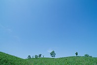 A Plateau And The Blue Sky