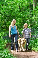 Children and dog walking in forest among bluebell flowers