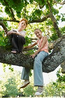 Children in a Tree