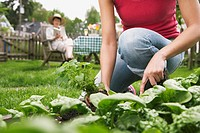 Woman Gardening (thumbnail)