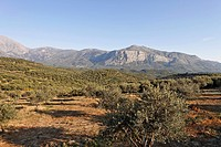 View of Mt  Dikte near Emparos, Crete, Greece, Europe