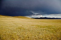 Storm clouds above the Mongolian steppe, north central Mongolia