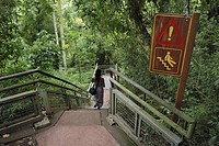 Stairs and sign be careful, slippy path in Iguazu National Park, Brazil