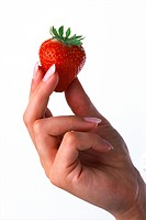 Agriculture _ Strawberry being held by a woman´s hand.