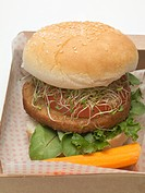 Burger with sprouts in cardboard box