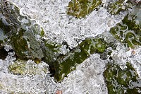 Layer of ice formed on green stones