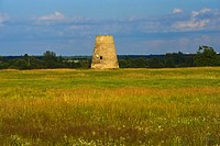 Flower meadow and old mill near Saka, Estonia, Baltic States, Europe
